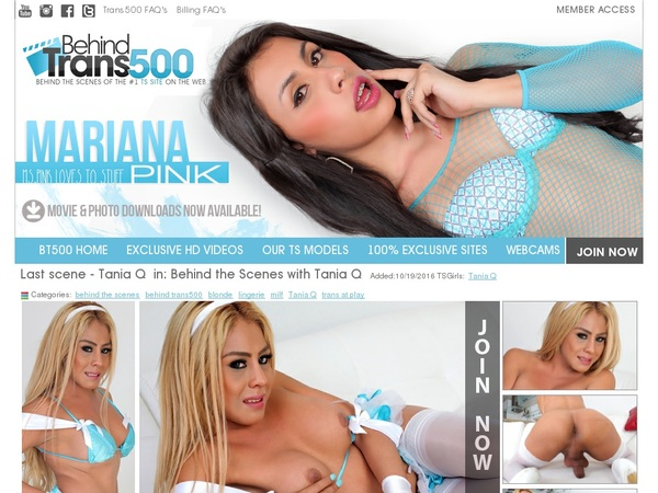 Behindtrans500 Account Gratis