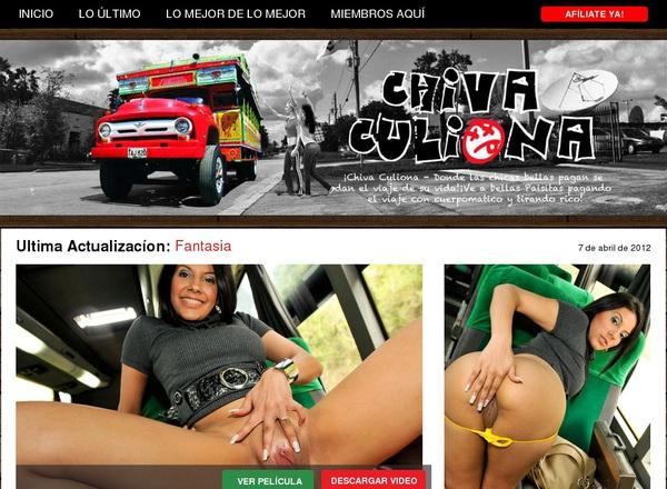 Free Pass For Chiva Culiona